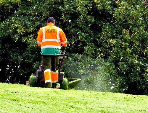 Grünanlagenpflege 2